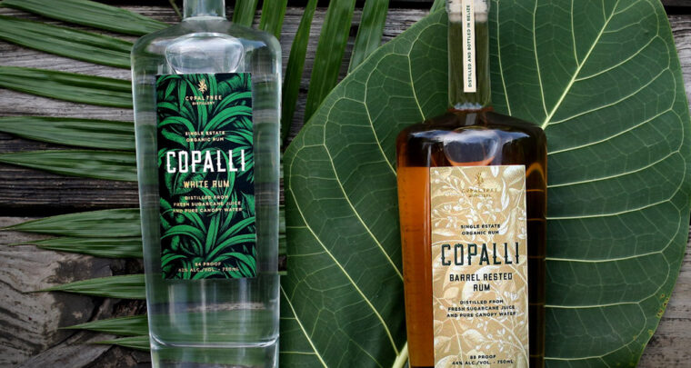 Best Gifts for Cocktail Lovers
